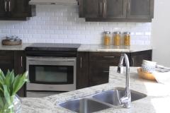 Kitchen_Sink_600_crop